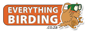 EverythingBirding